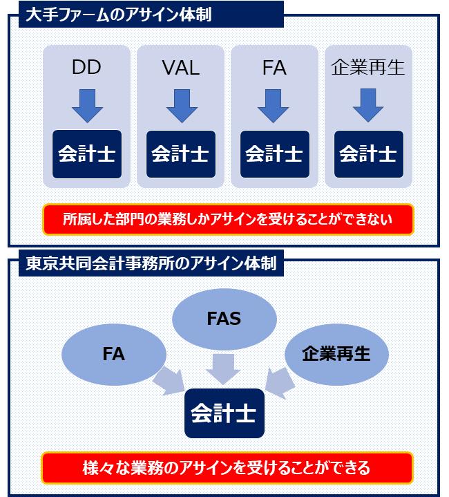東京共同会計事務所・体制図表