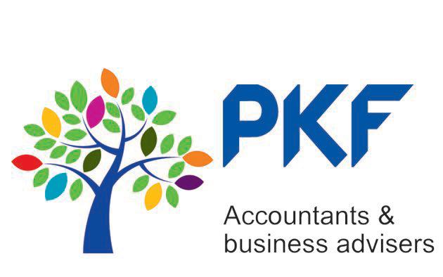 PKFインターナショナル_ロゴ